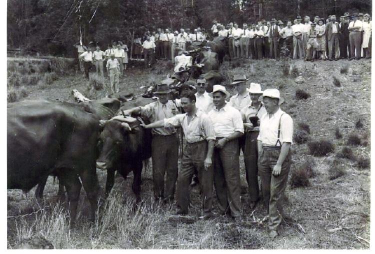 1945 cricket team visiting the Grainger farm - donated by Barry Grainger
