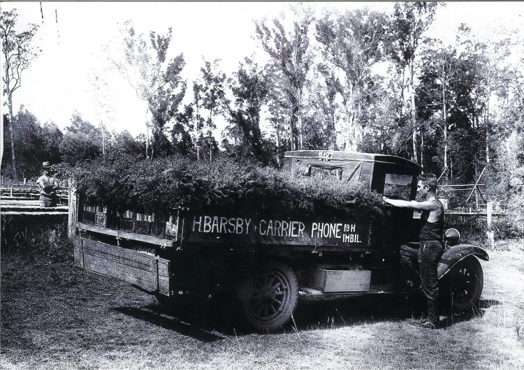 Barsby Truck - Forest seedling truck - Imbil - donated by Kaili Parker-Price