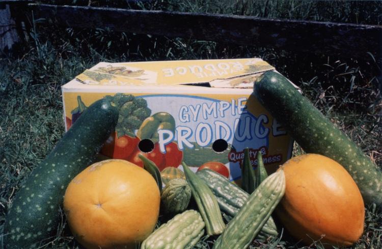 Gympie produce at farm at Amamoor - donated by Cacilia Michalowitz