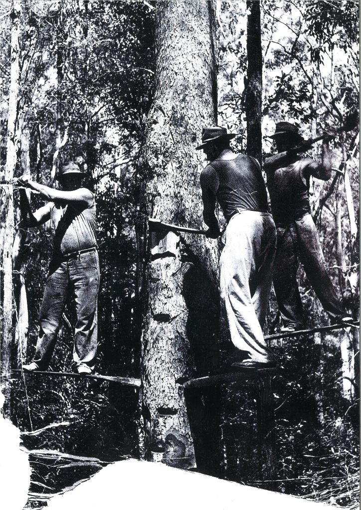 Forestry workers - Imbil - donated by Kaili Parker-Price