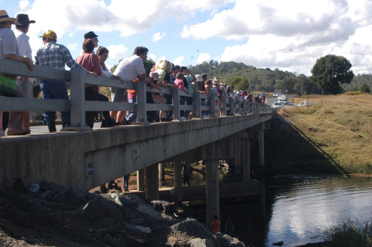 Traveston Dam protest - May 2006 - Gympie Times collection